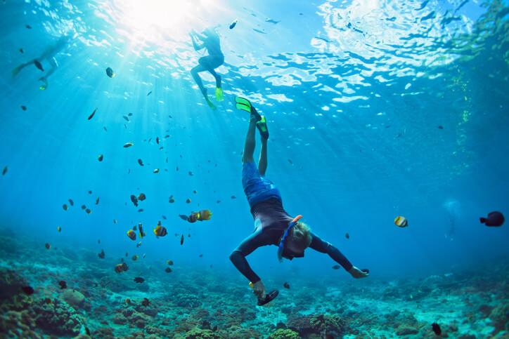 Aluguel de roupa para mergulho: R$450,00